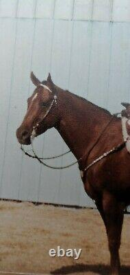 Price Reduced! Vintage Victor Sterling Silver Headstall and Breast-collar